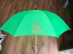 Rain umbrella with 1 color print