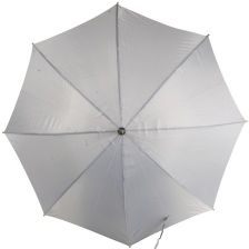 Polyester 190T umbrella with wooden shaft 1834